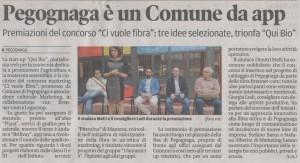 Articolo della Gazzetta di Mantova del 17 giugno 2016